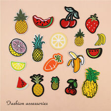 10pcs Embroidered Sew Iron On Patches Badge Fabric Applique Bag Clothes Craft