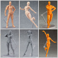He/She Male/Female Action Figma Figure Model Doll Human Body Toy For Drawing