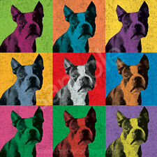 BOSTON TERRIER T-Shirt Pop-Art Vintage-Wash Tee S-5XL