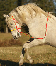 Any 2 Color ENGLISH BRIDLE & REINS Beta Biothane Trail Show Endurance ANY SIZE