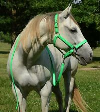 *DRAFT SIZE* Any COLOR Horse HALTER & LEAD for Turnout Show BETA BIOTHANE