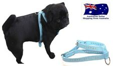 Small Dog Walking Harness S M  Blue Rhinestone Adjustable -Puppy Collar Walk Boy