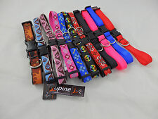Adjustable dog collar by Lupine from teacup to Great Dane, good nylon webbing