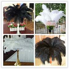 Perfect 20-100pcs natural ostrich feathers 8-24inch / 20-60cm
