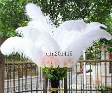 Super feather 20-200pcs white natural ostrich feathers 22-24inch / 55-60cm