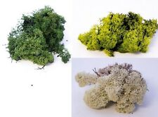 Dried Artificial Reindeer Moss Lining Craft Flower Hanging Baskets Plant New