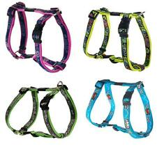 ROGZ Fancy Dress Adjustable Dog Harness Small Dogs All Colors