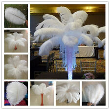 Wholesale 10-100pcs High Quality Natural OSTRICH FEATHERS 6-28 inch/15-70cm