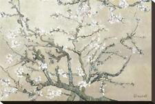 Almond Branches in Bloom, San Remy, c.1890 (tan) Stretched Canvas Print by van