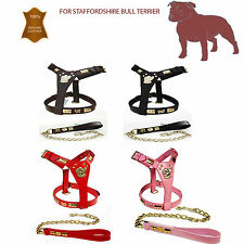 STAFF STAFFORDSHIRE BULL TERRIER LEATHER DOG HARNESS & LEAD SET BROWN BRASS KNOT