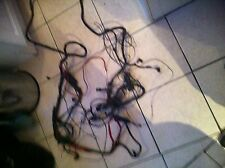 ESCORT RS TURBO S2 ENGINE MANAGEMENT WIRING LOOM ZVH KIT CAR RALLY CAR
