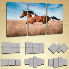 Stretched Hd Canvas Print Contemporary Abstract Wall Art Runing Horse Painting