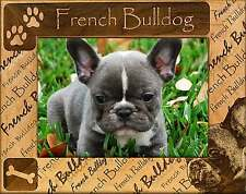 FRENCH BULLDOG: ENGRAVED PICTURE FRAME #0080 Available in four sizes