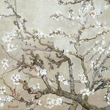 Almond Branches in Bloom, San Remy, c.1890 (tan) Art Print by van Gogh, Vincent