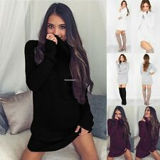 Fashion Womens Autumn Winter Long Sleeve Knit Pullover Turtleneck Sweater Dress