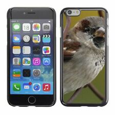 Hard Phone Case Cover Skin For Apple iPhone Sparrow Bird