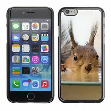 Hard Phone Case Cover Skin For Apple iPhone Funny squirrel drink fro