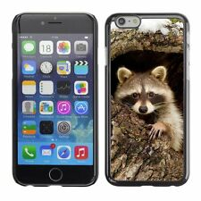 Hard Phone Case Cover Skin For Apple iPhone Charming raccoon animal