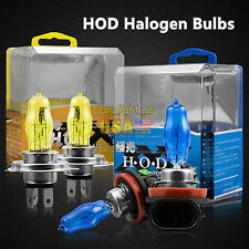 100W H1 H4 H11 9005 9006 Gas Halogen HOD Headlight Lamp Lights Bulbs 3000K/6000K
