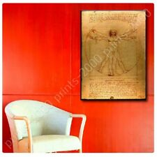 Alonline Art - POSTER Or STICKER Decals Vinyl The Vitruvian Man Leonardo Da