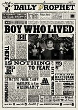 Harry Potter The Daily Prophet Newspaper Boy Who Lived Art Print/Poster