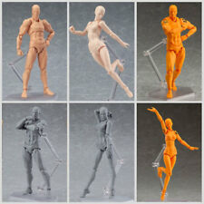 He/She Male/Female Action Figma Figure Doll Human Body Toy For Cartoon Drawing