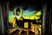 Pink Floyd Animals album cover color photograph picture poster art print photo