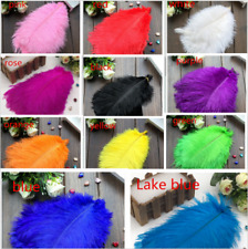 Wholesale 10-500pcs Beautiful Ostrich Feathers! 20-25Cm / 8-10 Inches