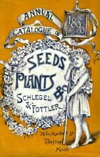 Schlegel Vintage Seed Cover Picture Art Print Poster A4 A3 A2 A1