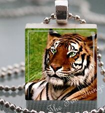 Big Cat Scrabble Tile Pendant Handcrafted Charm Pendant Green Eyed Tiger AA06