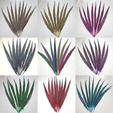 Wholesale,10 -100Pcs beautiful pheasant tail feathers 30-35 cm / 12-14 inches