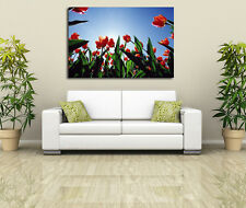 LOW ANGLE VIEW OF RED BLOOMING TULIPS FLORAL NATURE SCENE CANVAS PRINT WALL ART