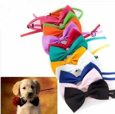 Cat Dog Pet dicky bow tie novelty head dress 15 colour choice a superior quality