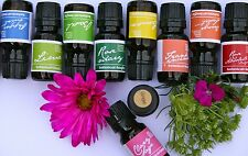 Mix & Match Buy 3 Get 1 FREE Pure CARROT SEED Essential Oil- Botanical Benefits