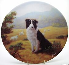 The Border Collie  - Collectable Danbury Mint Plate