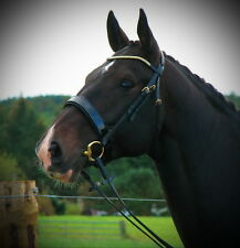 FSS GOLD CRYSTAL Patent GILDED Comfort PADDED HUNTER Hunt FLAT Caveson Bridle