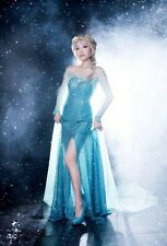 Fairy Princess FROZEN Snow Lady Gown Fancy Party Dress Costume For Adult Ladies