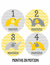 Baby Girl/Boy Gender Neutral Monthly Baby Stickers Month Milestone Sticker 028
