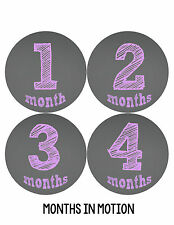 Baby Girl Monthly Milestone Birthday Stickers 12 Month Photo Shirt Sticker #122