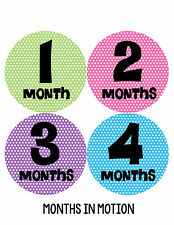 Baby Girl Monthly Baby Stickers 12 Month Age Sticker Just Born Photo #195