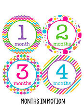 Baby Girl Monthly Baby Stickers 12 Month Age Sticker Just Born Photo #198