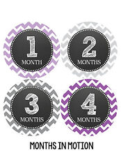 Baby Girl Monthly Photo Shirt Stickers 12 Month Milestone Sticker Newborn #070