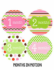 Baby Girl Monthly Photo Shirt Stickers 12 Month Milestone Sticker Newborn #038