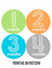 Baby Boy Monthly Milestone Birthday Stickers 12 Month Photo Shirt Sticker #143