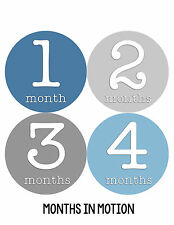 Baby Boy Monthly Milestone Birthday Stickers 12 Month Photo Shirt Sticker #253