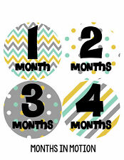 Baby Boy Monthly Milestone Birthday Stickers 12 Month Photo Shirt Sticker #249