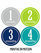 Baby Boy Monthly Milestone Birthday Stickers 12 Month Sticker Photo Prop #162