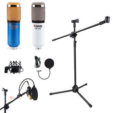 Microphone Dual Clip Boom Stand Tripod Condenser Mic Pop Filter Shock Mount Kit