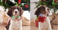 Mud Pie Holiday Pet Dog Maizy Christmas Tree or Poinsettia Collars 5005001