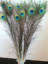 10-100pcs30-32 inches / 75-80cm  perfectnatural peacock feather